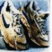 Shoelogy
