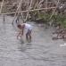 15june_Sitalakhya_river