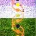 DNA ASENDING AND DESENDING