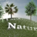3D Generated nature photography